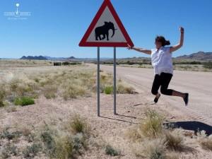 Marlène et les éléphants de Namibie