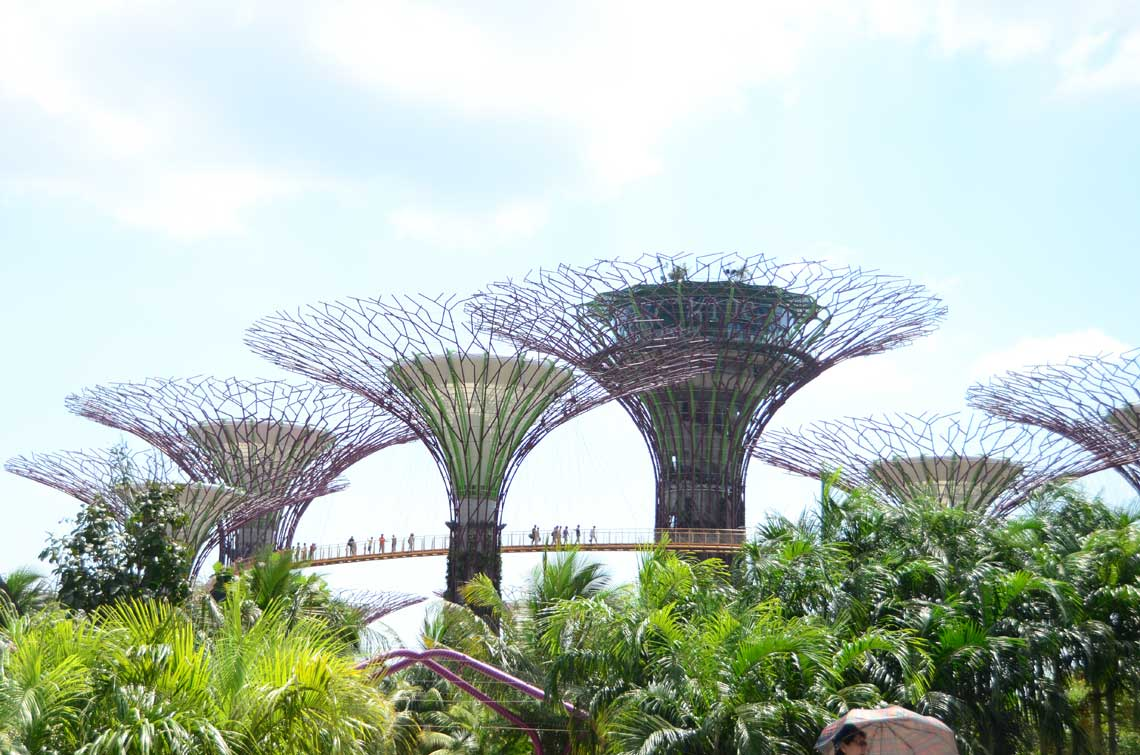Arbres géants et ponts suspendus, Gardens by the Bay, Singapour