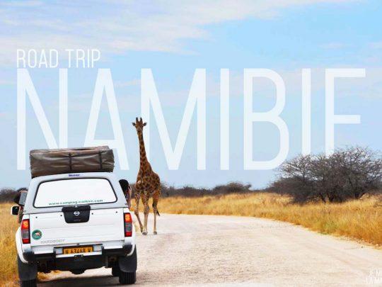 Road-trip Namibie • 1,820km en 10 jours