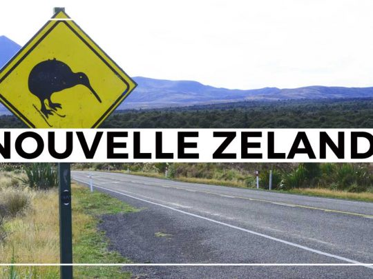 Attention aux kiwis!